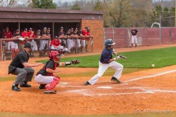 Lee University Baseball Game